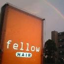 HAIR fellow / フェロー